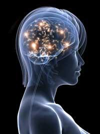 Creative brain, from iStockPhoto